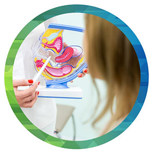 An image of a medical professional pointing to a 3D figure of the female urinary tract as a female patient looks on.